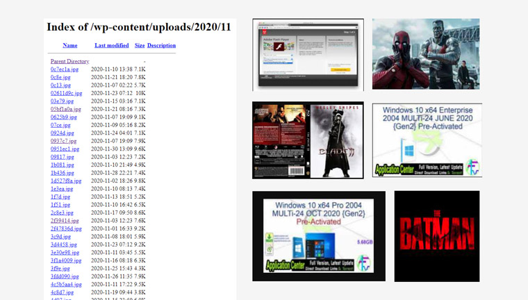 torrent malware example image